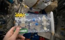 EXO-ISS : des expériences en classe et dans l'espace !